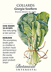 Collards Georgia Southern HEIRLOOM Seeds