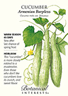 Cucumber Armenian Burpless HEIRLOOM Seeds