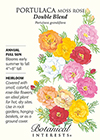 Portulaca Moss Rose Double Blend HEIRLOOM Seeds