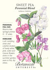 Sweet Pea Perennial Blend HEIRLOOM Seeds