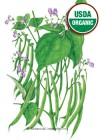 Bean Bush Blue Lake 274 Organic HEIRLOOM Seeds